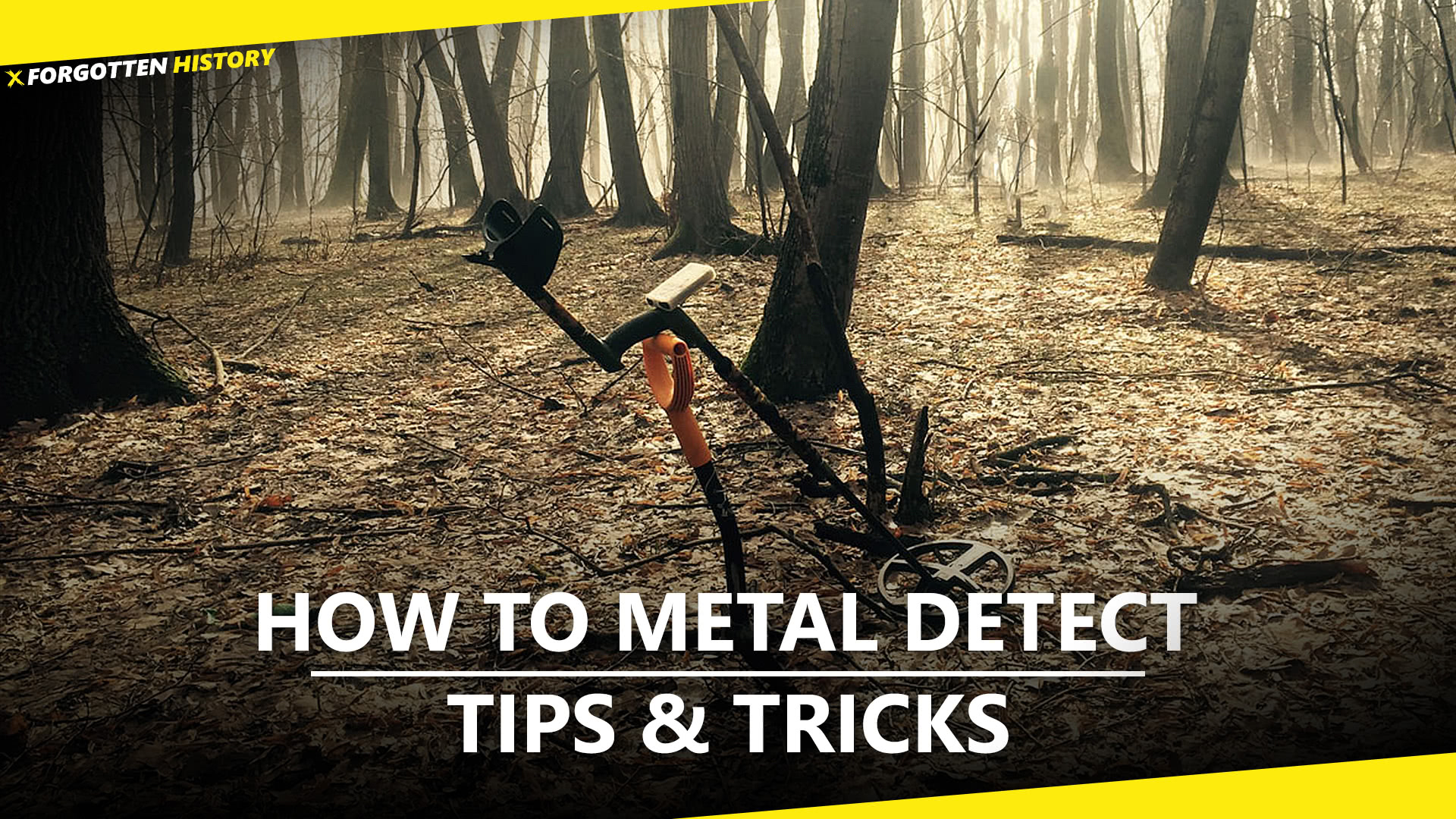 How to Metal Detect: Tips & Tricks